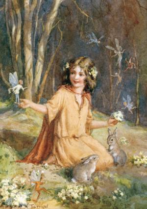 Primrose Fairies