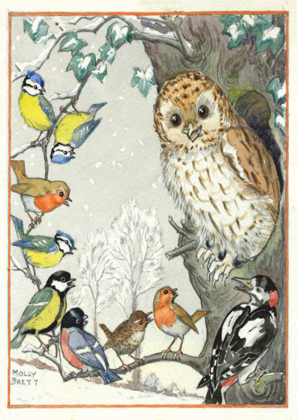 An owl and other birds