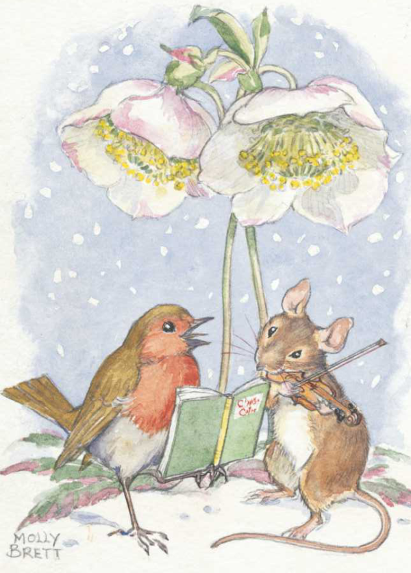 Robin and mouse under Christmas rose