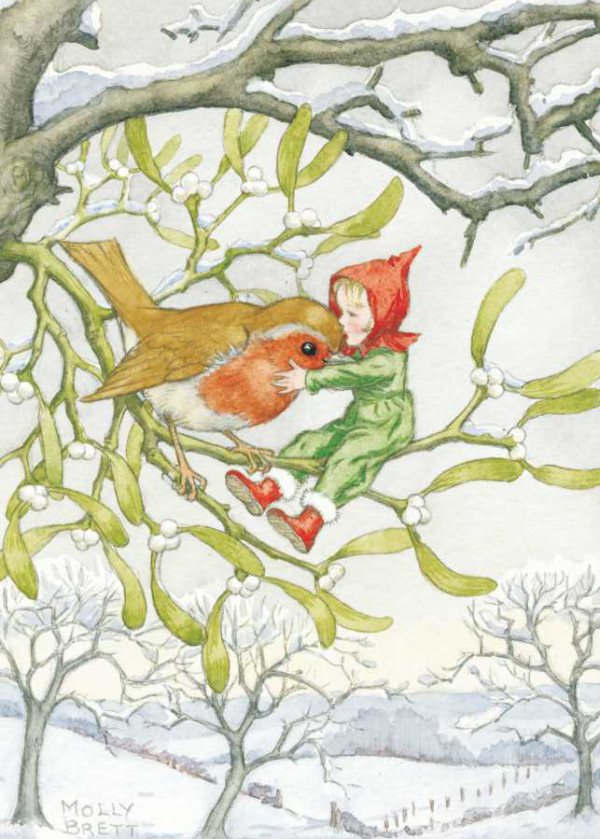 Christmas robin and pixie